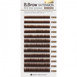B.Brow Dark Brown