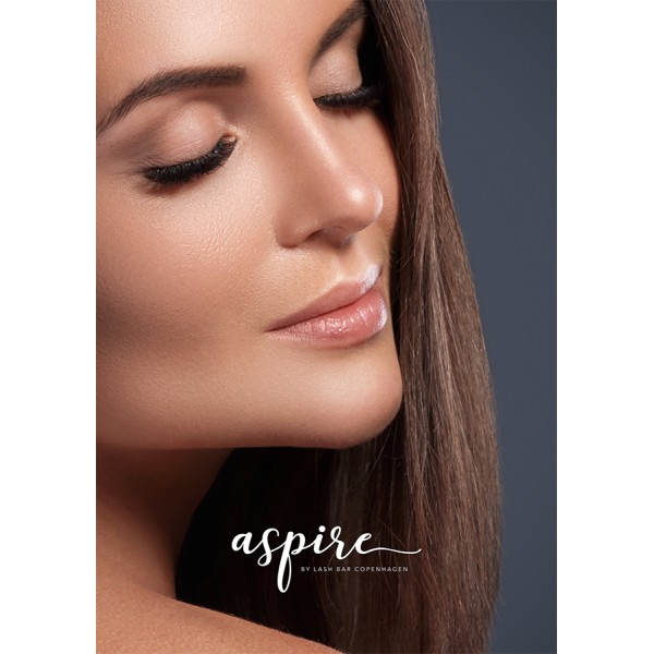Aspire Poster #1