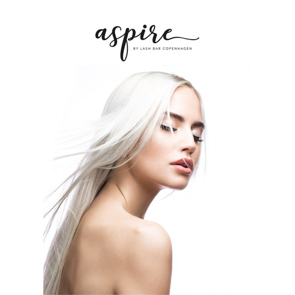 Aspire Poster #2