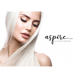 Aspire Poster #6