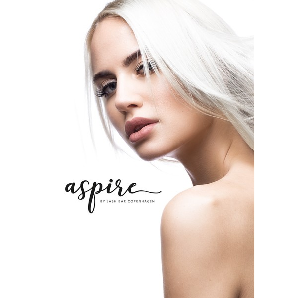 Aspire Poster #7